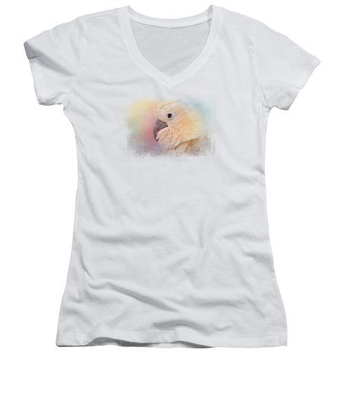 Every Day Is Colorful Women's V-Neck T-Shirt (Junior Cut) by Jai Johnson