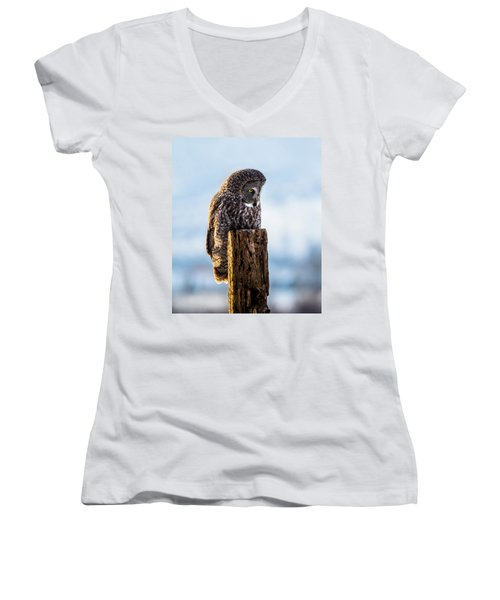 Eye On The Prize - Great Gray Owl Women's V-Neck