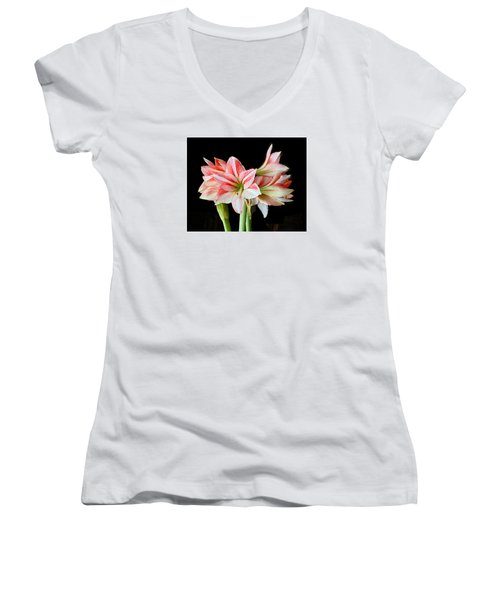 Fairyland Amaryllis  Women's V-Neck T-Shirt (Junior Cut) by Janis Nussbaum  Senungetuk