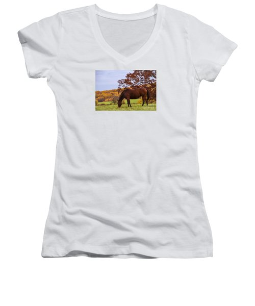 Fall And A Horse Women's V-Neck T-Shirt (Junior Cut) by Rima Biswas