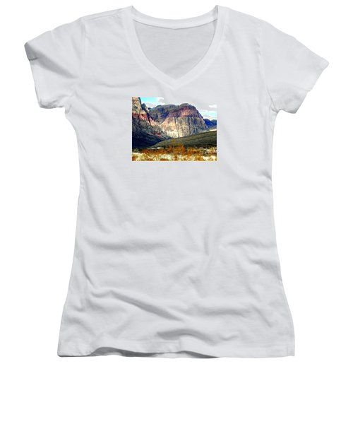 Fall Color In The Winter Season Women's V-Neck (Athletic Fit)