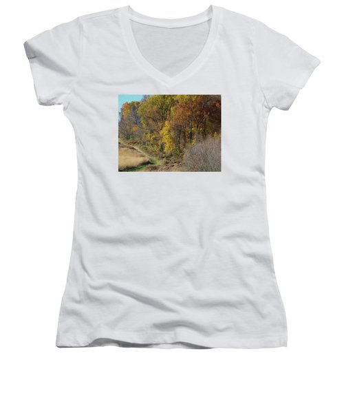 Fall Colors As Oil Women's V-Neck