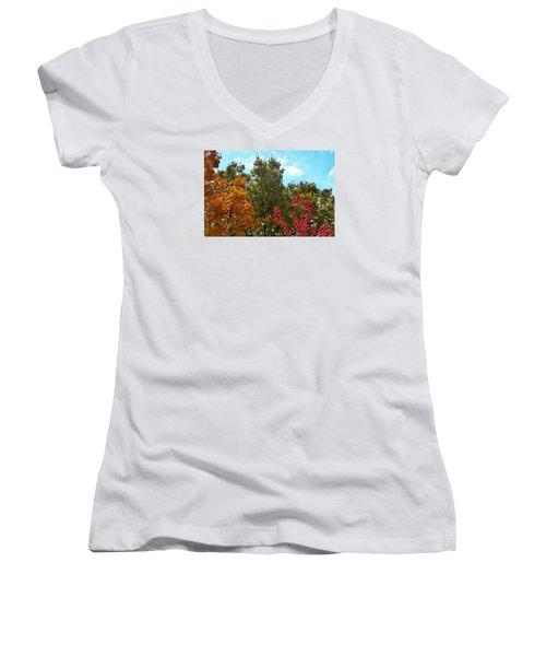 Fall Colors Women's V-Neck T-Shirt (Junior Cut) by Nikki McInnes