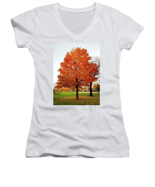 Fall Is Coming Women's V-Neck T-Shirt