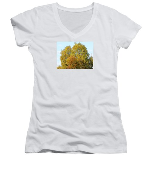 Fall Tree Women's V-Neck T-Shirt (Junior Cut) by Craig Walters