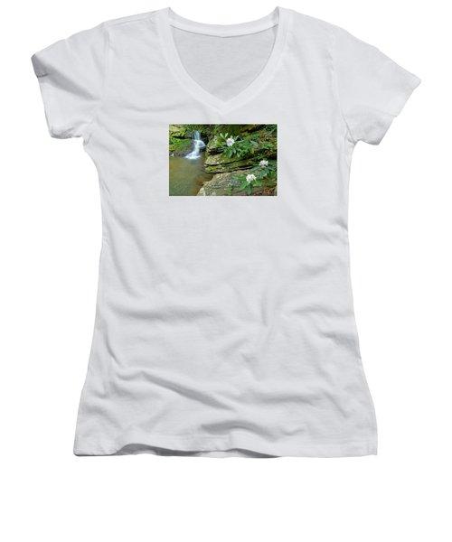 Falls On Catawba Creek Women's V-Neck T-Shirt (Junior Cut) by Alan Lenk