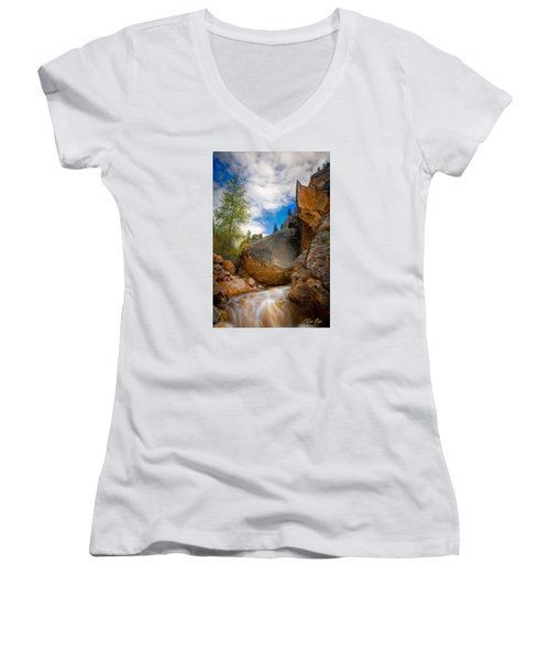 Fast-flowing Crazy Woman Women's V-Neck