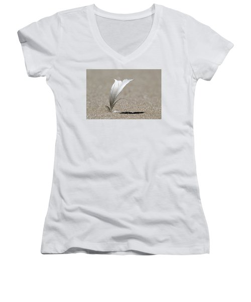 Feather Port Jefferson New York Women's V-Neck (Athletic Fit)