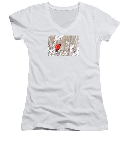 Women's V-Neck T-Shirt (Junior Cut) featuring the photograph Feathered Friends by Trina Ansel
