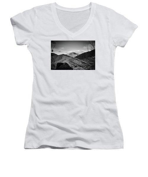 Feathertop Women's V-Neck T-Shirt (Junior Cut) by Mark Lucey