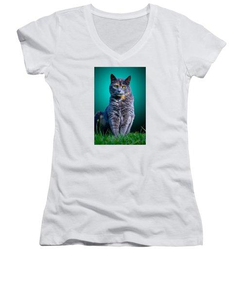 Feline Shine Women's V-Neck T-Shirt (Junior Cut) by Brian Stevens