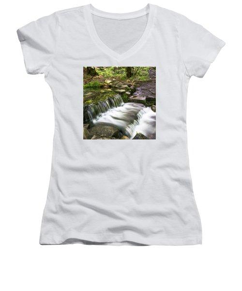 Fern Spring 4 Women's V-Neck T-Shirt (Junior Cut) by Ryan Weddle