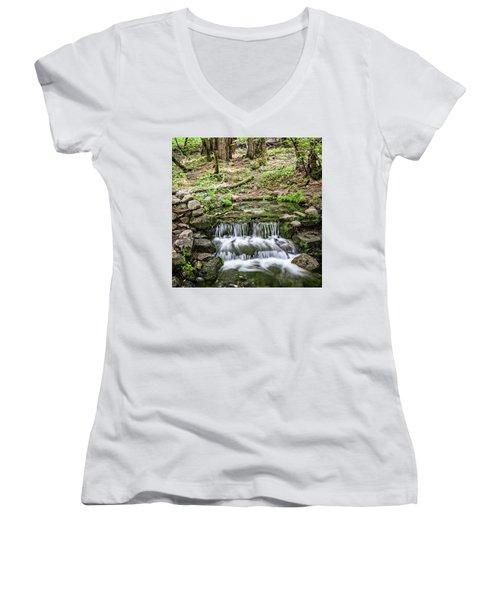 Fern Spring 5 Women's V-Neck T-Shirt
