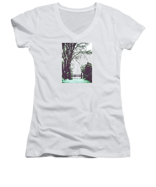 Field Gate Women's V-Neck T-Shirt