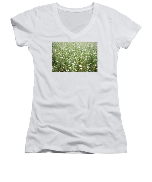 Field Of Queen Annes Lace Women's V-Neck