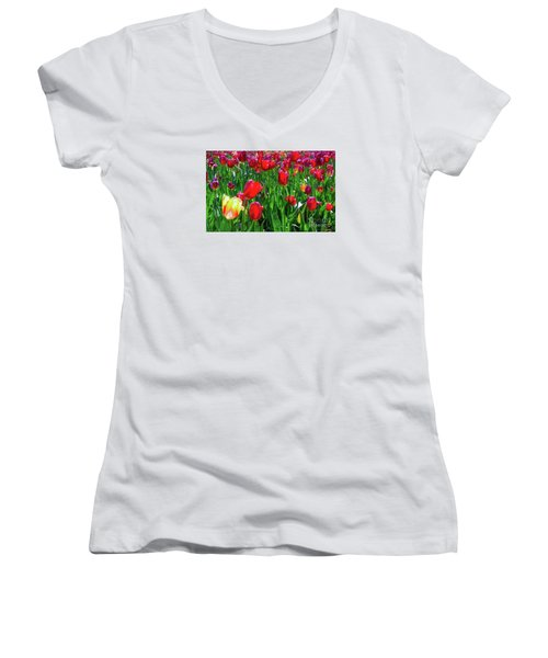 Tulip Garden Women's V-Neck