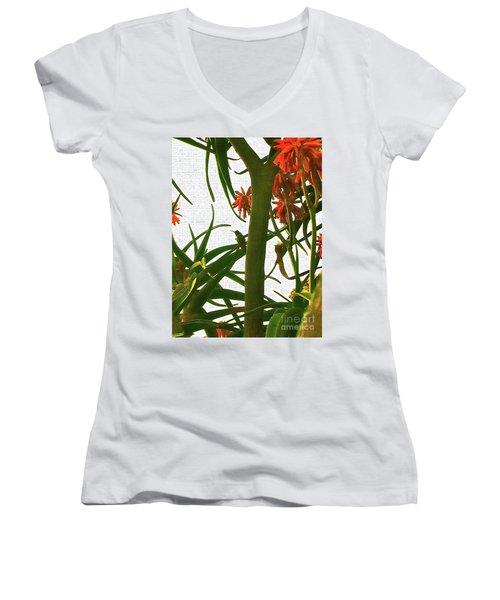 Finding Fortune Women's V-Neck T-Shirt