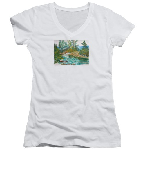 First Watercolour Women's V-Neck (Athletic Fit)