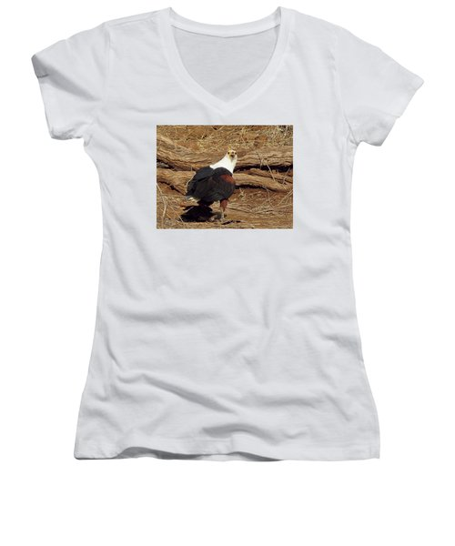 Fish Eagle Women's V-Neck (Athletic Fit)