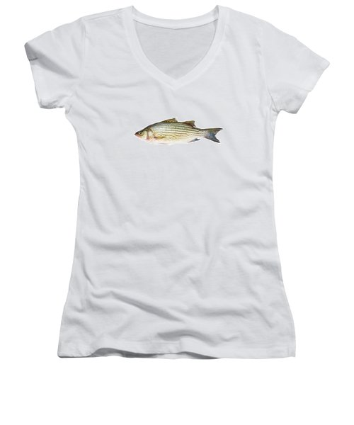 Fish Women's V-Neck (Athletic Fit)