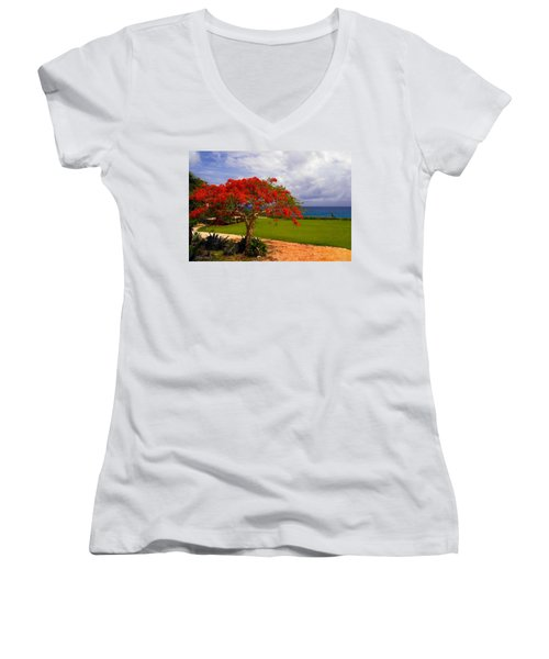 Flamboyant Tree In Grand Cayman Women's V-Neck T-Shirt (Junior Cut) by Marie Hicks