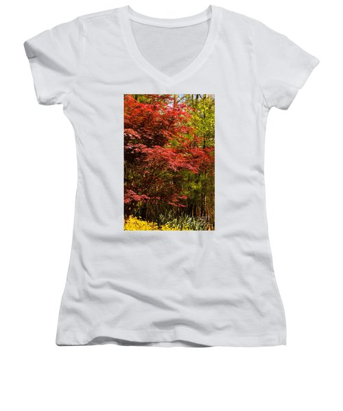 Flame In The Backyard Women's V-Neck T-Shirt (Junior Cut) by Marilyn Carlyle Greiner
