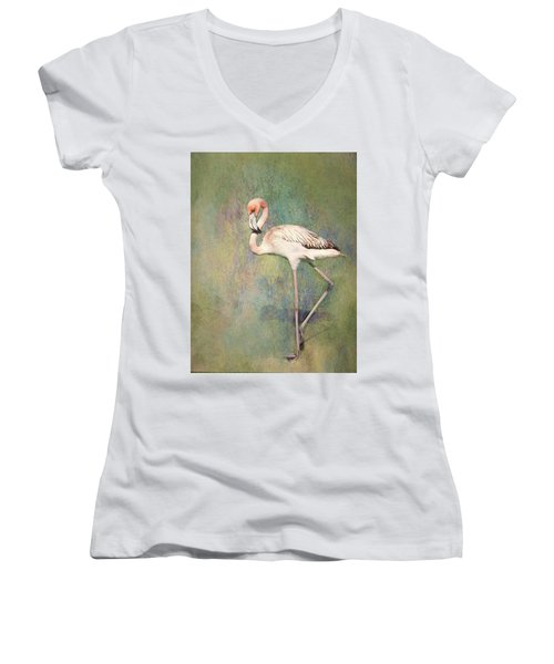 Flamingo Dancing Women's V-Neck T-Shirt