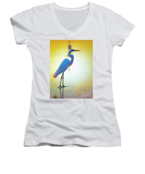 Florida Atlantic Beach Ocean Birds  Women's V-Neck