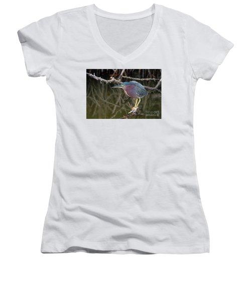 Florida Green Heron Women's V-Neck T-Shirt