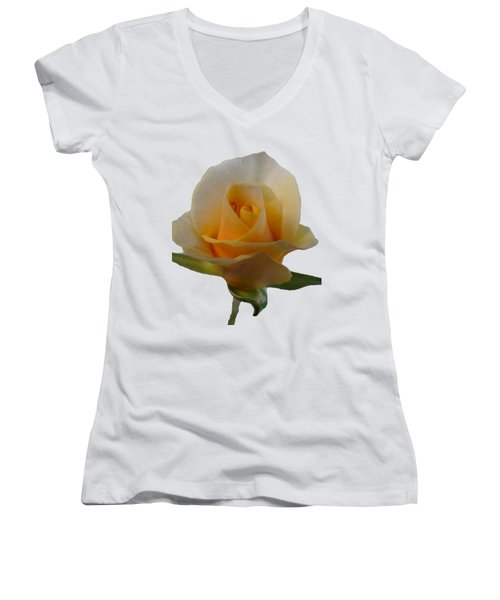 Flower Women's V-Neck T-Shirt (Junior Cut) by Laurel Powell