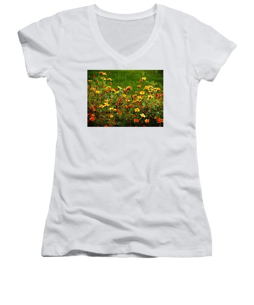 Flowers In The Fields Women's V-Neck T-Shirt (Junior Cut) by Joseph Frank Baraba