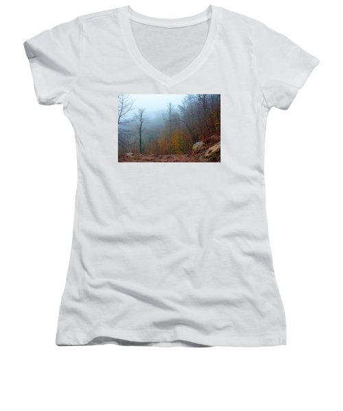 Foggy Nature Women's V-Neck (Athletic Fit)