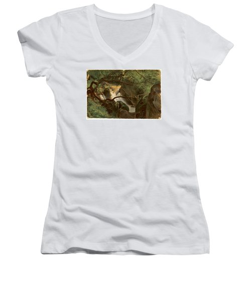Forest Interior With A Waterfall Papigno Women's V-Neck