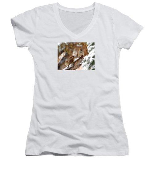 Four Sparrows Women's V-Neck T-Shirt (Junior Cut) by Deborah Moen