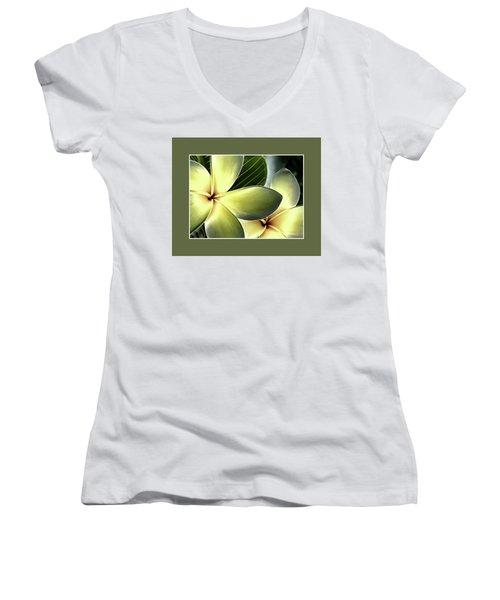 Frangipani - Plumeria Women's V-Neck T-Shirt