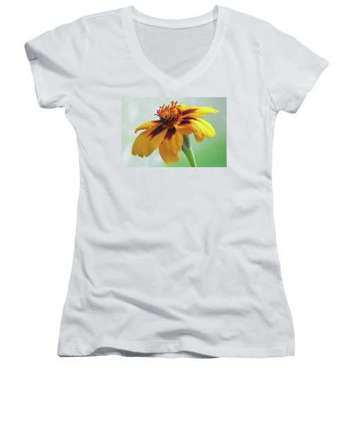 French Marigold Women's V-Neck T-Shirt