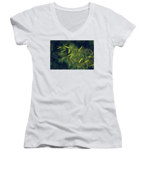 Stem Women's V-Neck T-Shirt