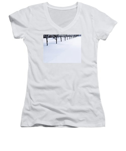Fresh Snow Women's V-Neck (Athletic Fit)