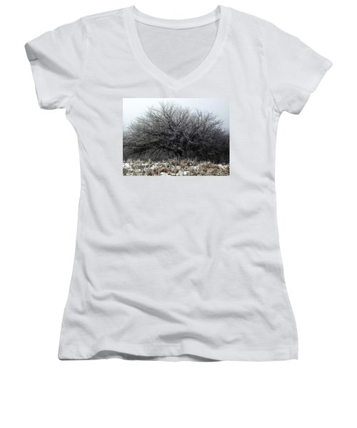 Women's V-Neck featuring the photograph Frosted Elm by Shelli Fitzpatrick