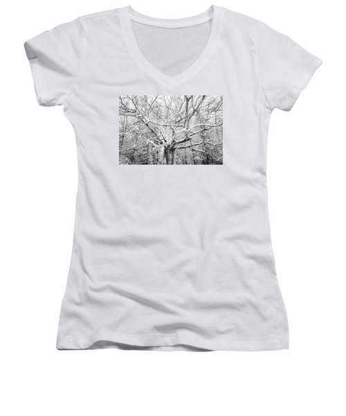 Frosted Women's V-Neck