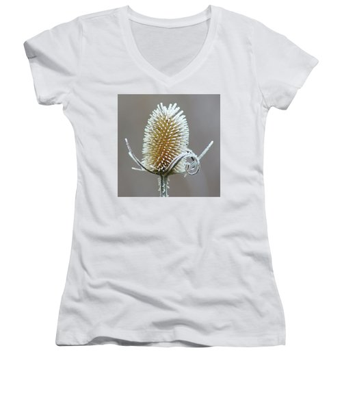 Frosted Teasel Women's V-Neck T-Shirt (Junior Cut) by Nikolyn McDonald