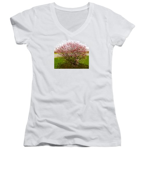 Women's V-Neck T-Shirt (Junior Cut) featuring the photograph Frosty Fire Bush by Spyder Webb