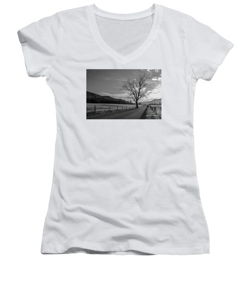 Frosty Morn Women's V-Neck T-Shirt (Junior Cut) by Marilyn Carlyle Greiner