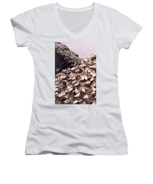 Women's V-Neck T-Shirt (Junior Cut) featuring the photograph Gannet Cliffs by Mary Mikawoz