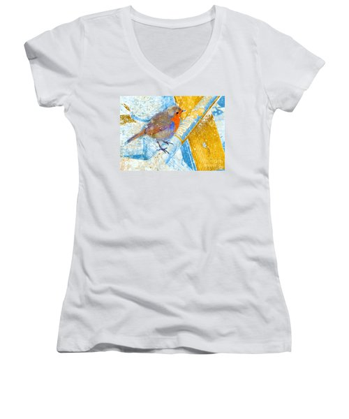 Garden Robin Women's V-Neck T-Shirt