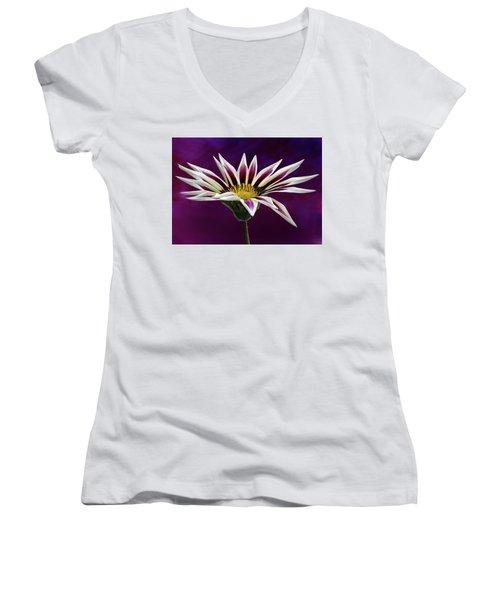 Gazania Women's V-Neck T-Shirt