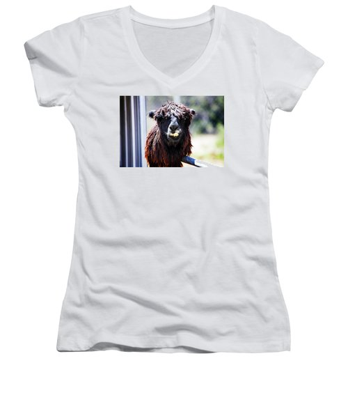 Women's V-Neck T-Shirt (Junior Cut) featuring the photograph Geofery by Anthony Jones