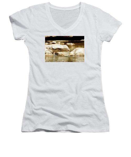 Golden Stream Women's V-Neck T-Shirt (Junior Cut) by Nancy Landry