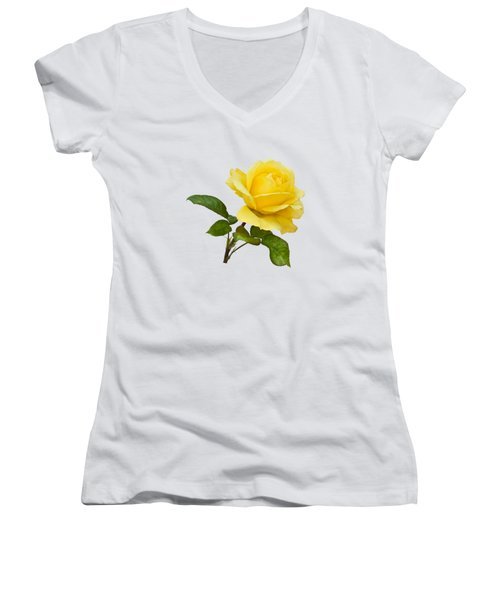 Golden Yellow Rose Women's V-Neck T-Shirt
