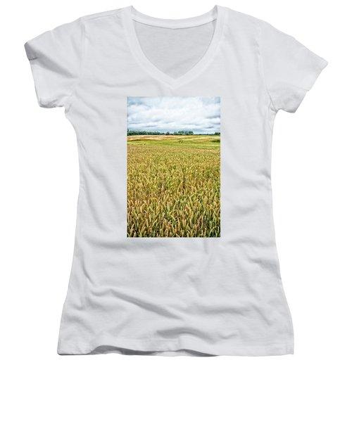 Grain Field Women's V-Neck T-Shirt
